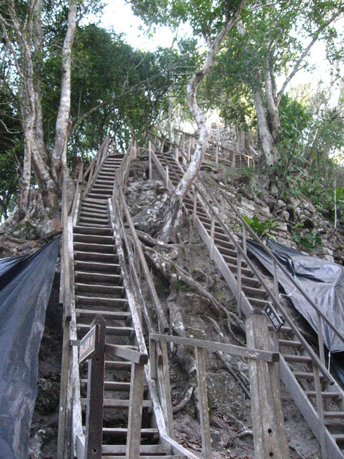 Drive to Guatemala Photo. I don't think any single place will beat the marvel of Tikal.  The only place that I think has a chance is Machu Picchu, Peru.  Right now, it's Tikal > Palenque > Monte Alban.  These are the stairs that lead up the Temple IV.